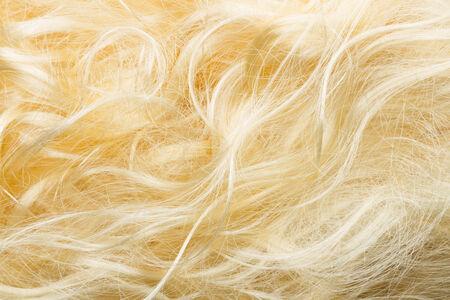 frizzy: blond frizzy hair fashion