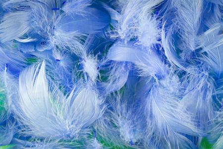 softness: blue full frame softness texture feathers wallpaper Stock Photo
