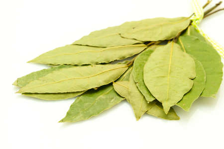 low  angle: low angle  isolated on white background bunch of dry bay leaf Stock Photo