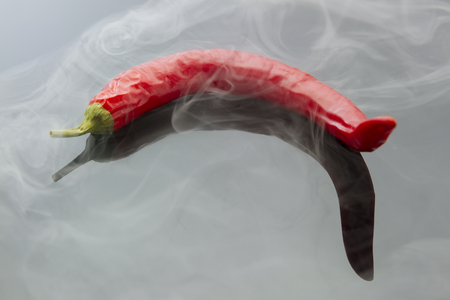 billow: chilli pepper with steam isolated on black reflective background