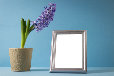 hyacinth flower in pot standing on table by wall with picture empty frame photo