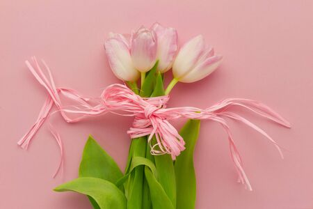 top view wallpaper with pink tulips with ribbon bow on pink background photo