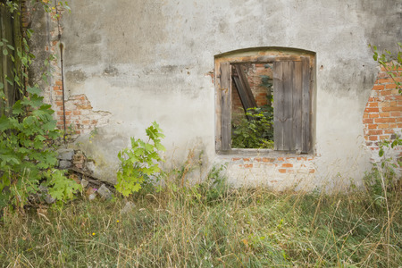 old buildings: full frame background of ruind house wall with window and plants Stock Photo