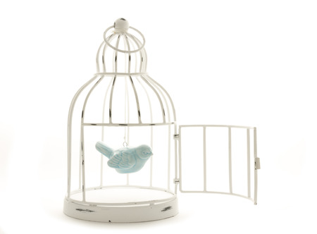 blue ceramic bird hanging in vintage wire painted cage