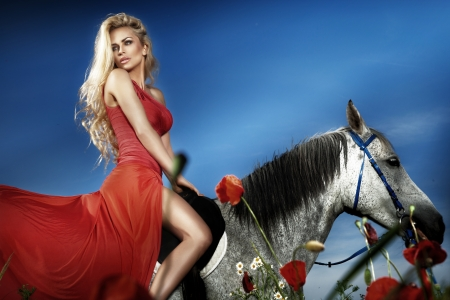 Fashionable blonde woman riding a horse in sunny day. Long curly hair.  Stock Photo