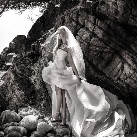 spectacular: Beautiful gorgeous blonde bride posing in fashionable wedding dress outddor. Coastal view. Stock Photo