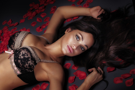 erotic woman: Sensual young brunette beauty posing in lingerie. Perfect slim body. Long healthy hair. Girl looking at camera ,lying over red rose petals. Stock Photo