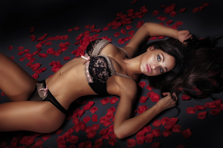 nude pose: Sexy elegant brunette woman lying over red rose petals, wearing sensual lingerie. Stock Photo