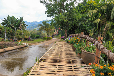 sump: Flower Bamboo bridge and road crossover canal