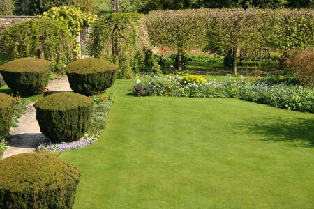 English garden with pavement photo
