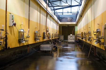 stabilization: Stainless steel fermentation vessels in Bulgarian winery Stock Photo