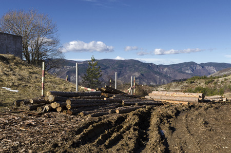 trespasser: Timber on a hill in a Rhodope Mountain Stock Photo