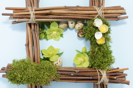 resurrect: Easter frame with two raw and five boiled quail eggs and three hellebore flowers Stock Photo