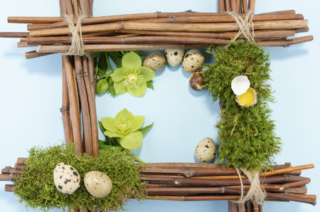 resurrect: Easter frame with seven quail eggs and two hellebore flowers