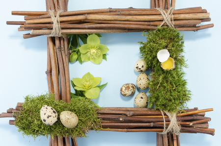 resurrect: Eastre frame with six quail eggs and two hellebore flowers Stock Photo