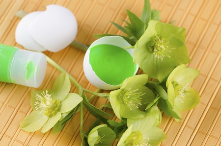 tempera: Easter decoration with egg shells green tempera paint and hellebore on a yellow pad. Selective focus Stock Photo