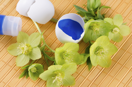tempera: Yellow pad and Easter decoration with egg shells and hellebore plus tempera paint. Selective focus