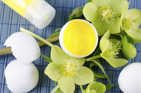 tempera: Easter decoration with yellow tempera paint in a tube and in a egg shell and hellebore. Selective focus