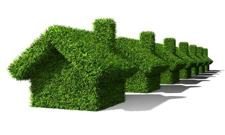 녹색 주택 생태 가지 배경에 고립