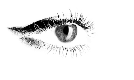 Closeup illustration of a female eye with long lashes in black and white with upper lid detail on a white background