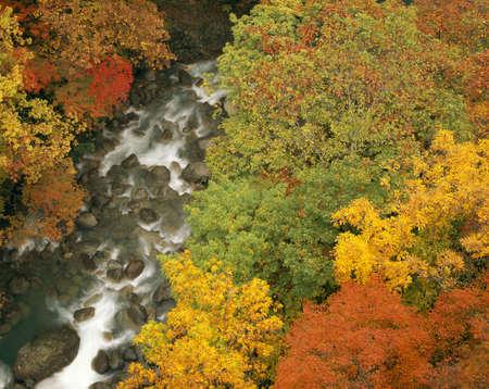 Matsukawa ravine