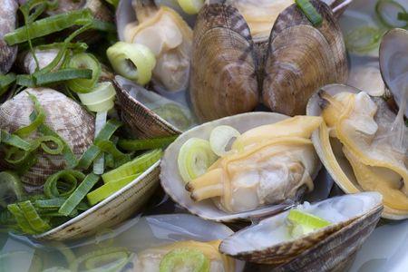 clam: Short-neck clam