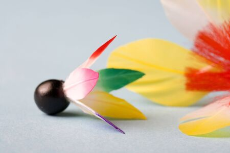 colorfulness: Feather of the battledore Stock Photo