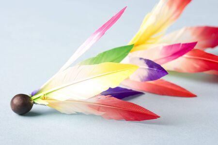 battledore: Feather of the battledore Stock Photo