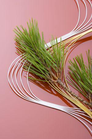 ceremonial: Ceremonial  paper strings
