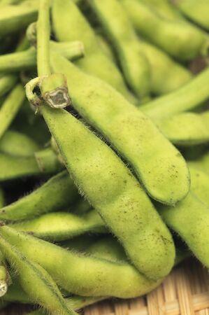 breen: Breen soybeans