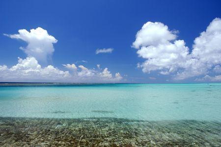 throb: Sea