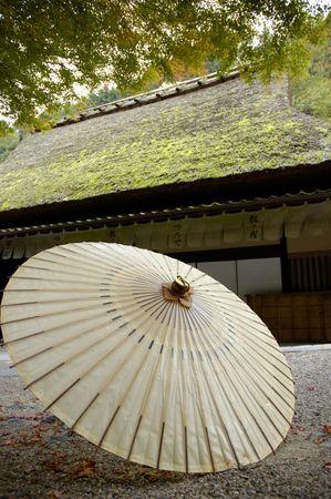 settling: Japanese Oilpaper umbrella