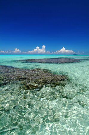 サンゴ礁の海 写真素材