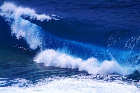 throb: Wave