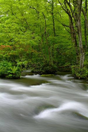 quietness: Oirase mountain stream Stock Photo