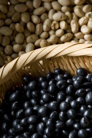 familiy: Black Bean