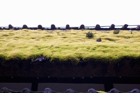 thatched: Thatched