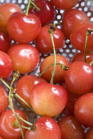 delectable: Cherries
