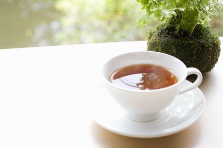 intermission: Tea Stock Photo