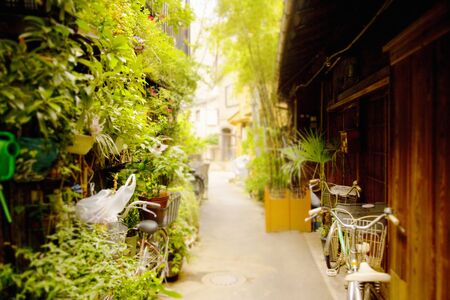 alley: Small alley