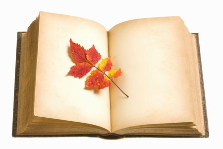 reading materials: Reading