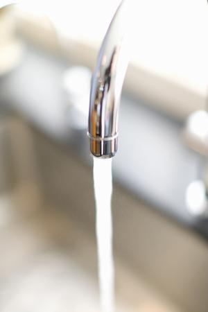 the faucet: Grifo