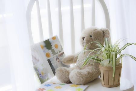 Teddy bear and photo albums Stock Photo