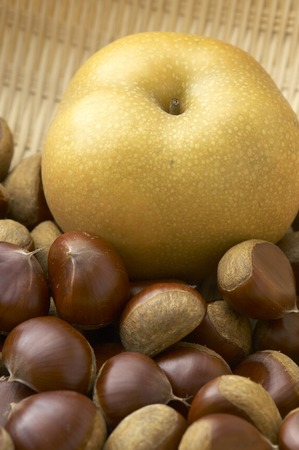 peal: Chestnut and peal