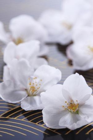Cherry Japanesestyle image