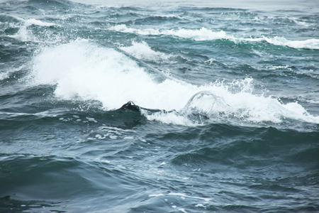 strait: Naruto Strait