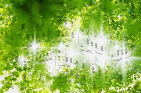 Bladmuziek en verse groene