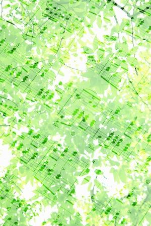Sheet music and fresh green Stock Photo