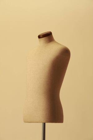 torso: Torso