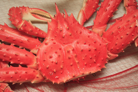 objects: Snow crab of objects Stock Photo